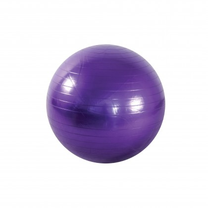 Anti-Burst Gym Ball (65cm)